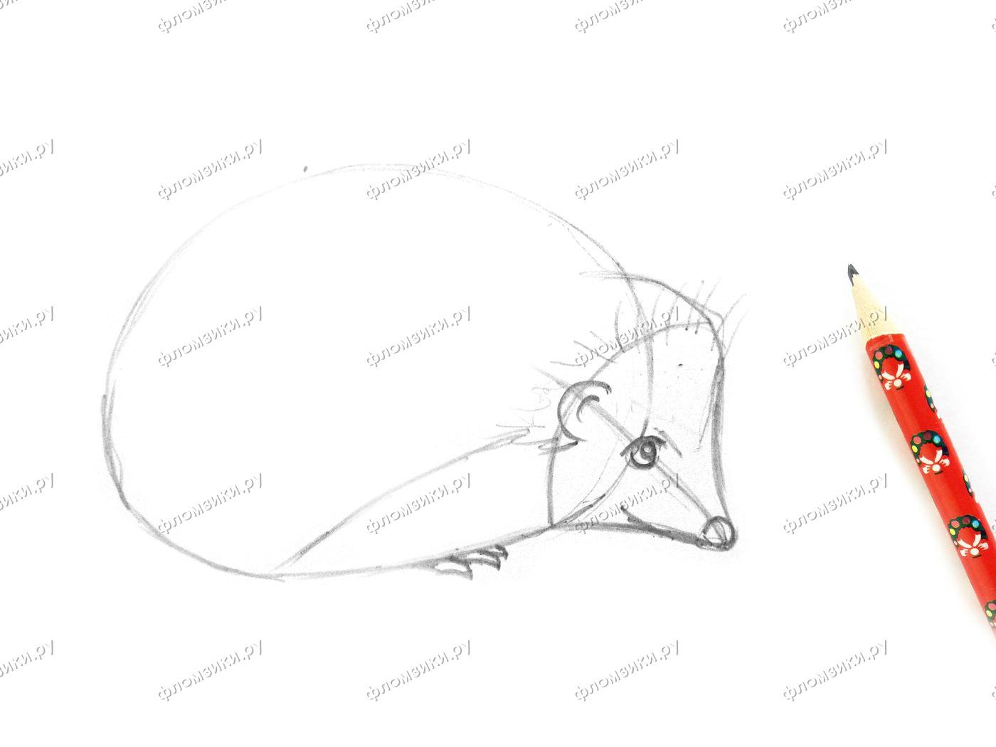 Как нарисовать ежа поэтапно