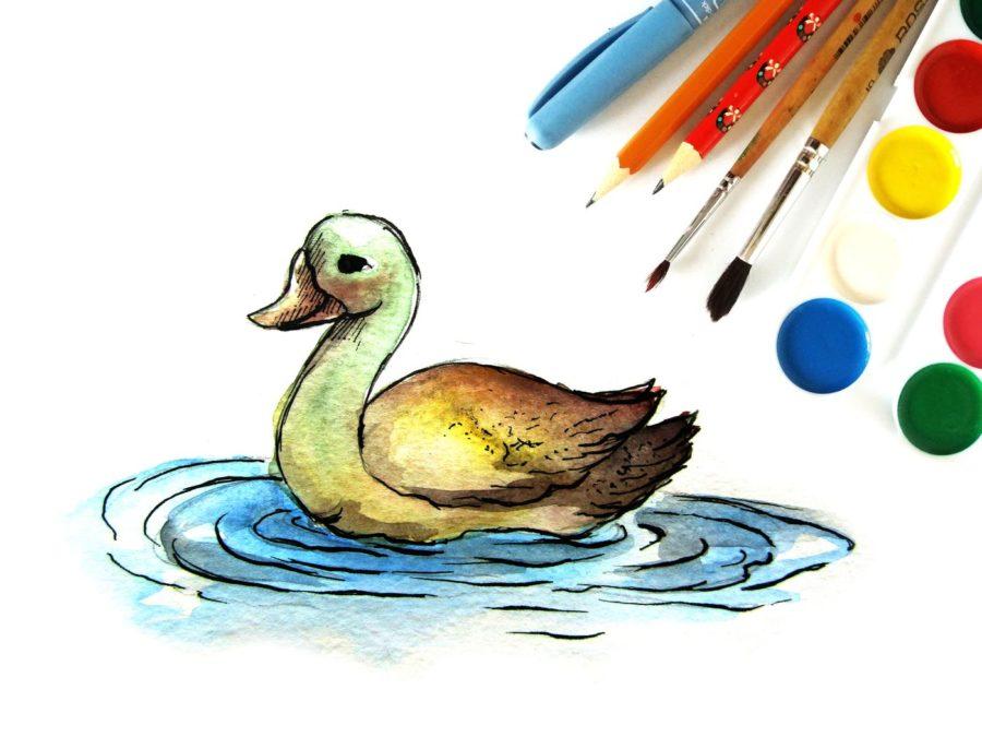 Как нарисовать утку поэтапно