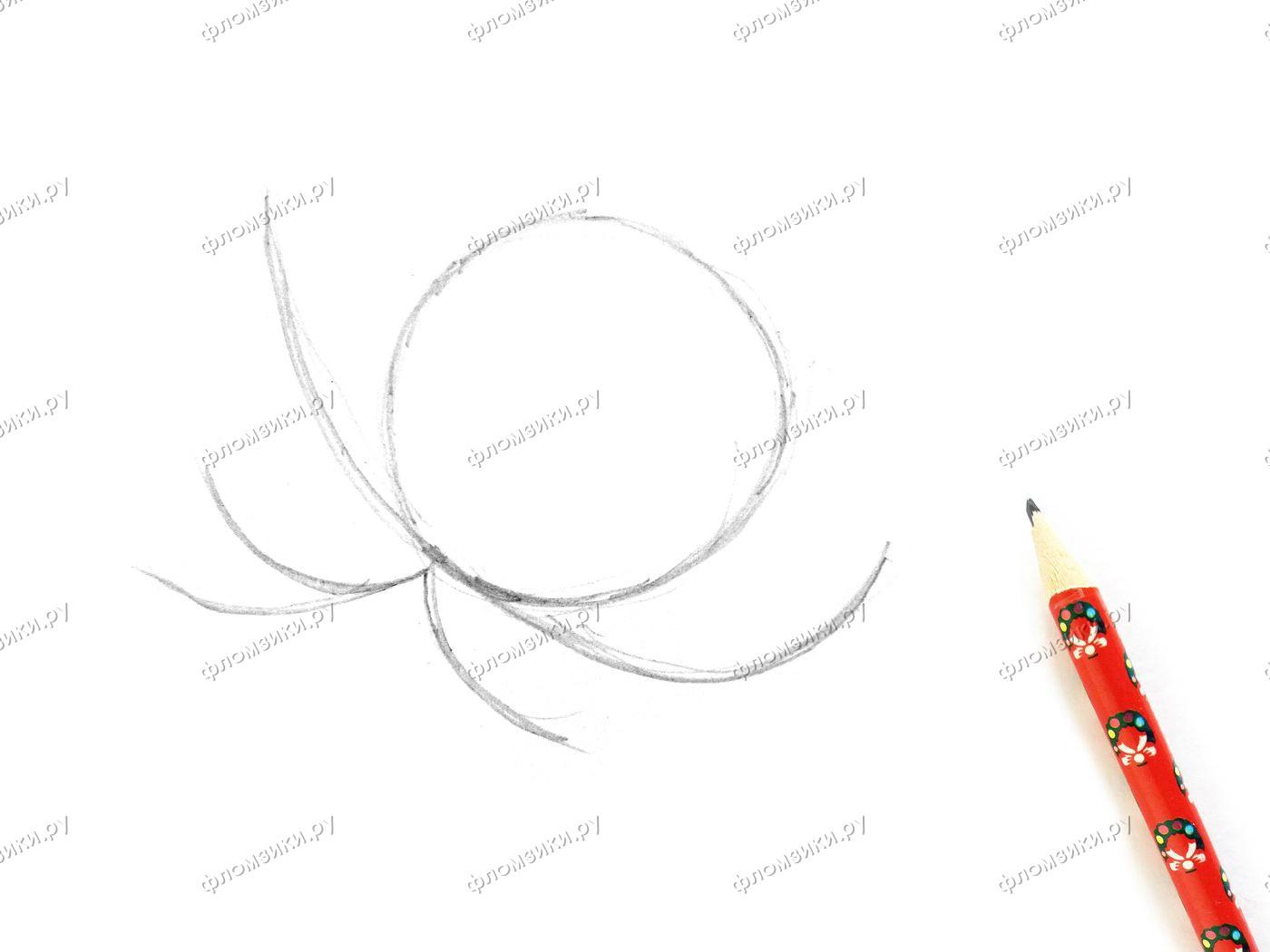 Как нарисовать кувшинку поэтапно
