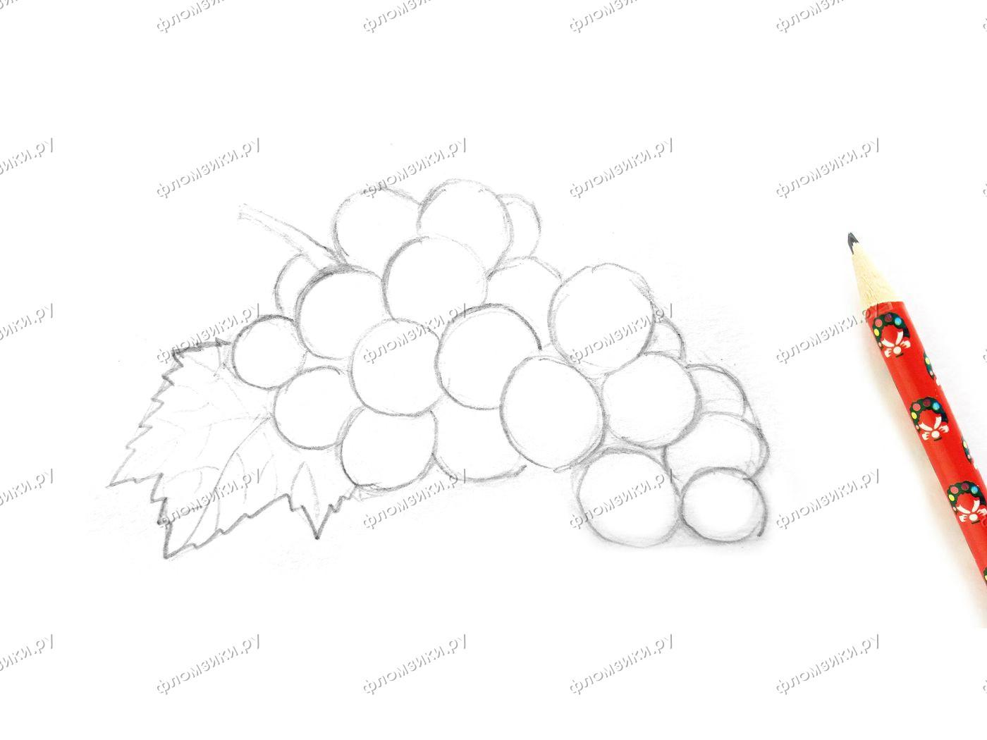Как нарисовать виноград поэтапно
