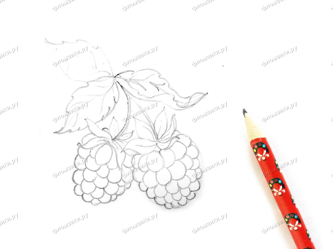 Как нарисовать малину поэтапно