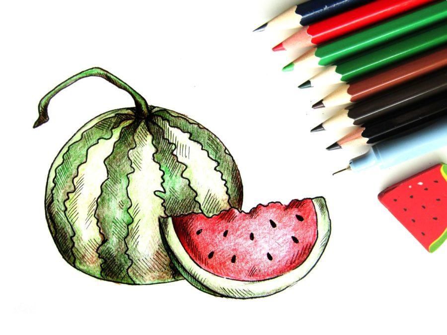 Как нарисовать арбуз поэтапно