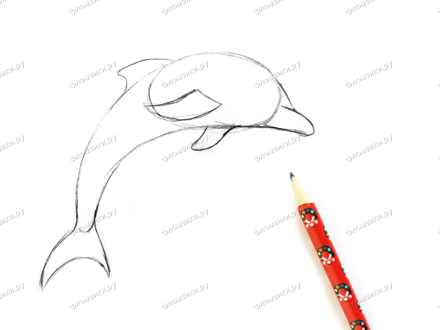 Как нарисовать дельфина поэтапно