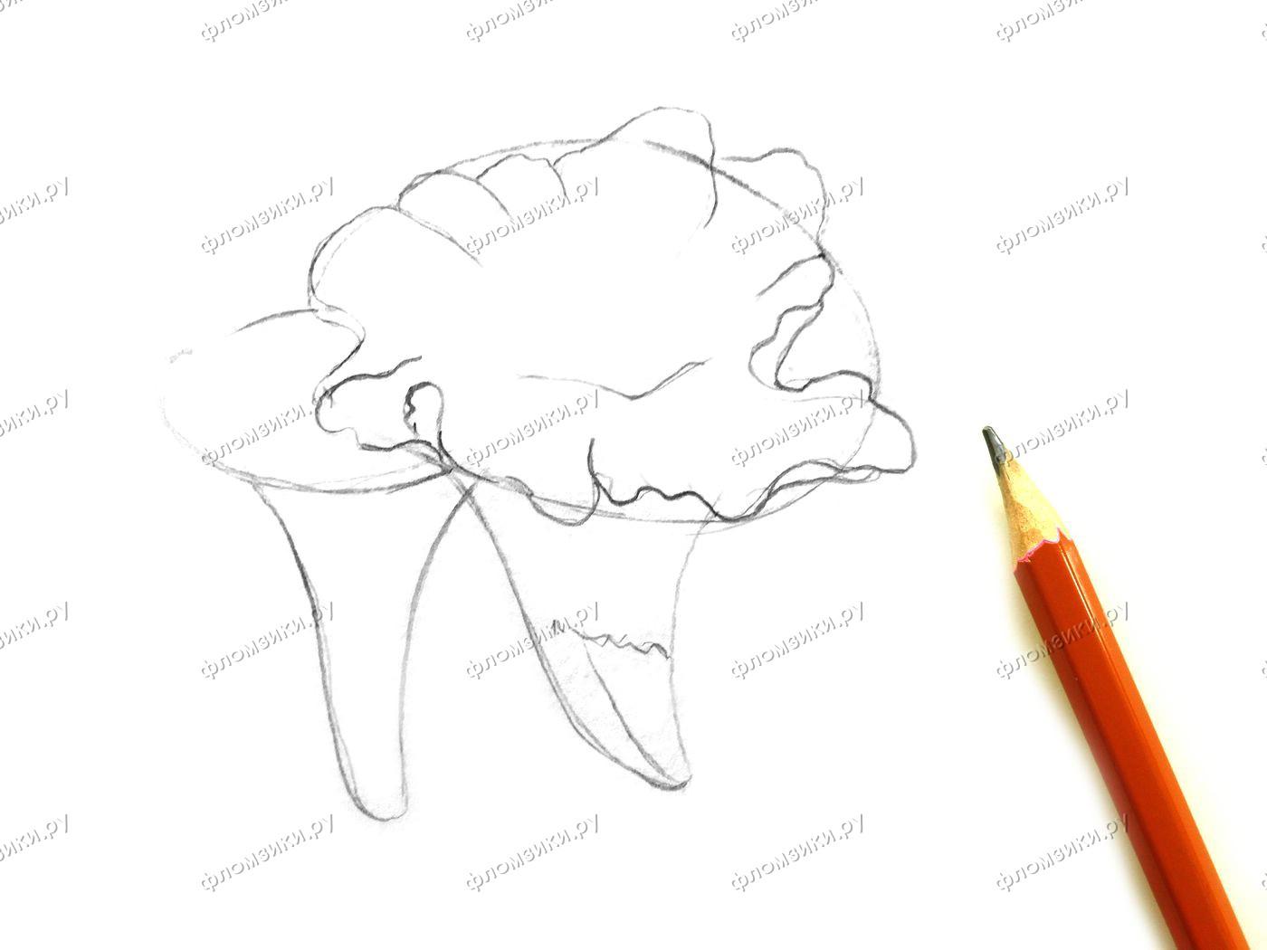 Как нарисовать лисичку поэтапно для детей