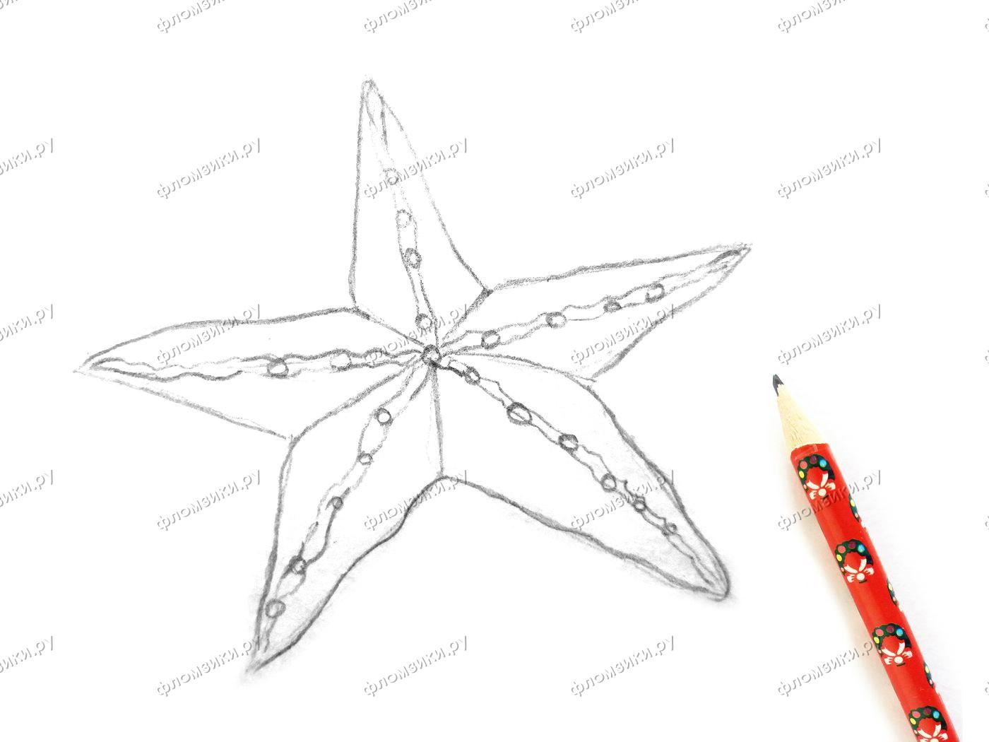 Как нарисовать морскую звезду поэтапно
