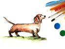 Как нарисовать собаку таксу поэтапно