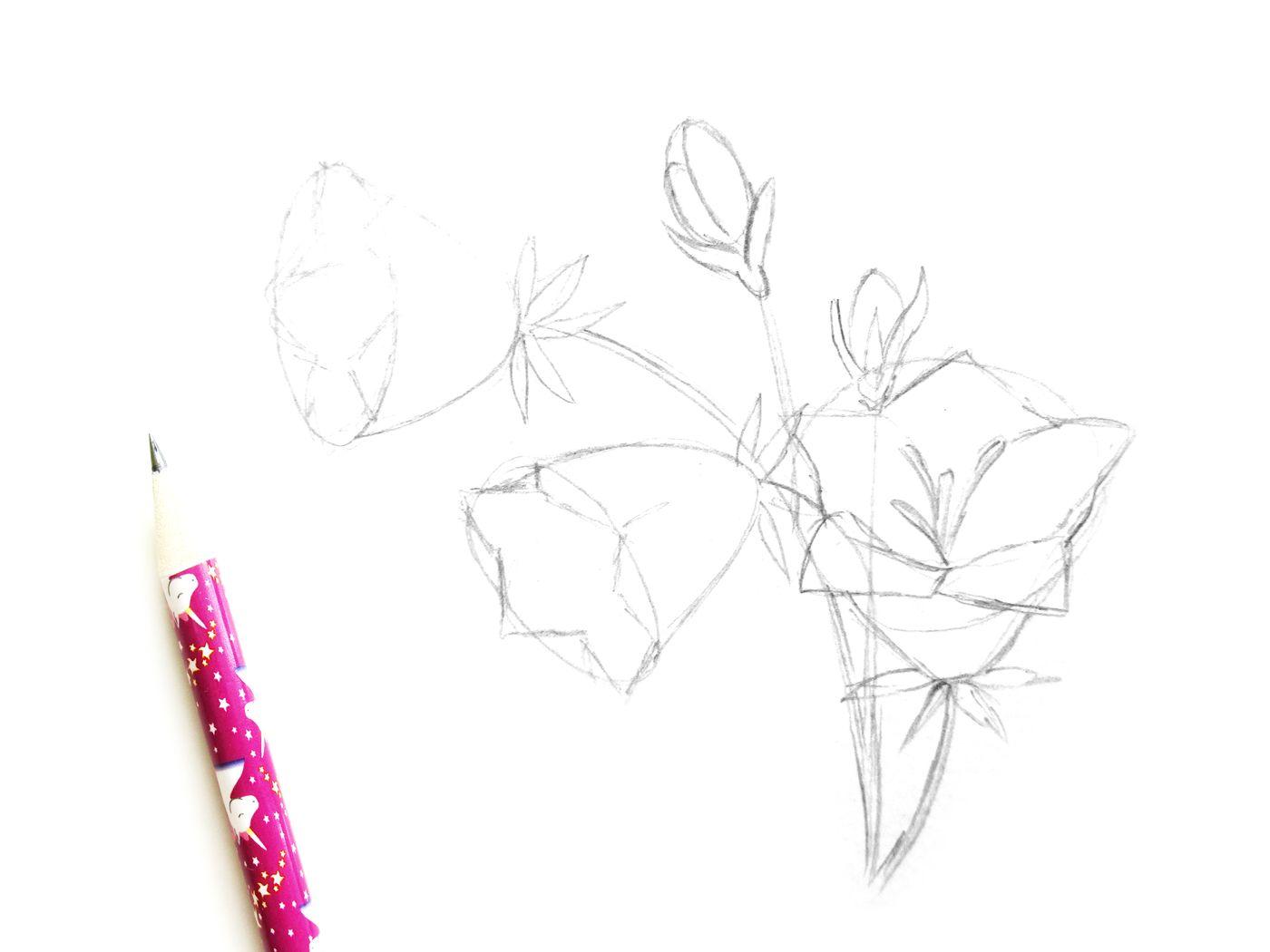 Как нарисовать колокольчик