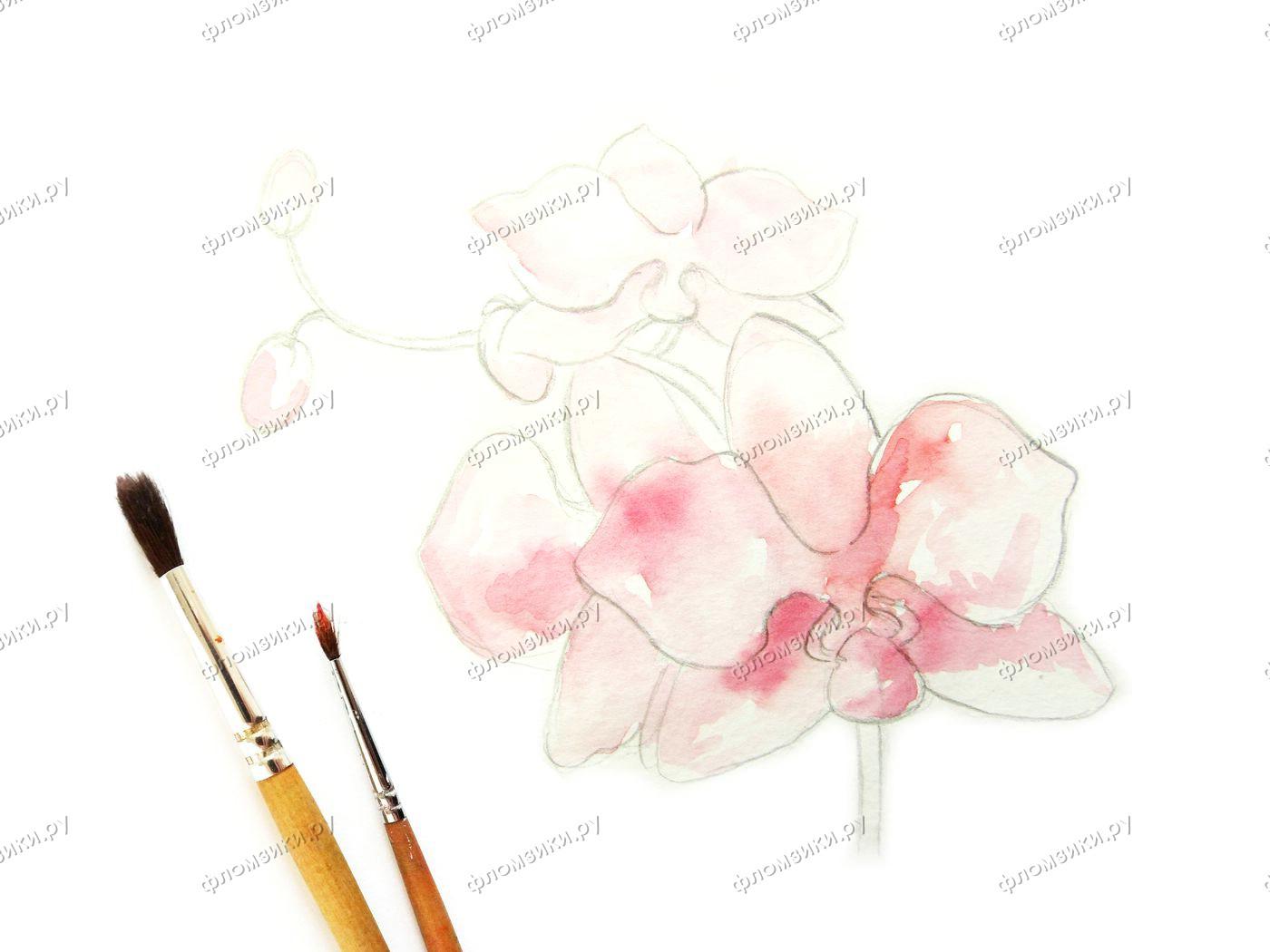 Как нарисовать орхидею