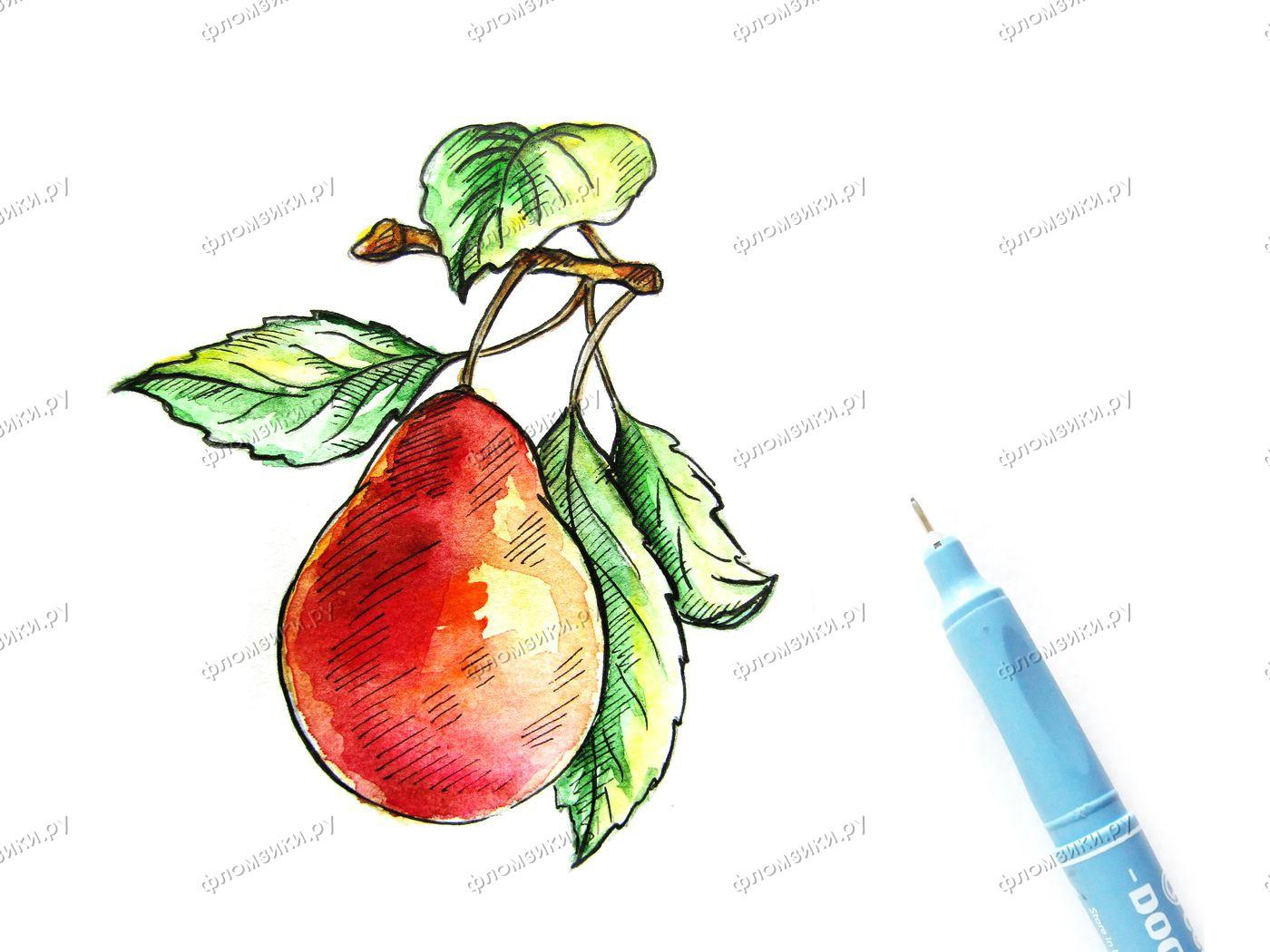 Как нарисовать грушу